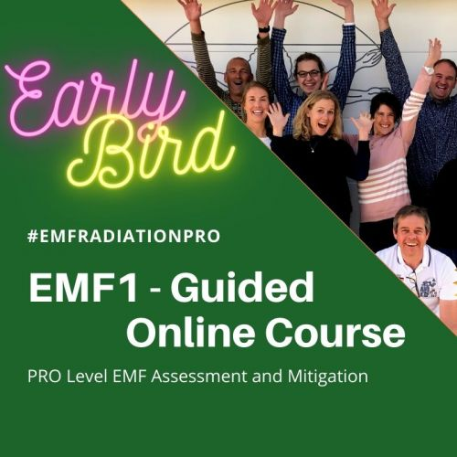 Early Bird Discount Price for the EMF1 Guided Online Course GEOVITAL